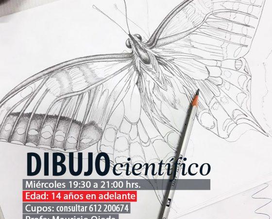Dibujo científico